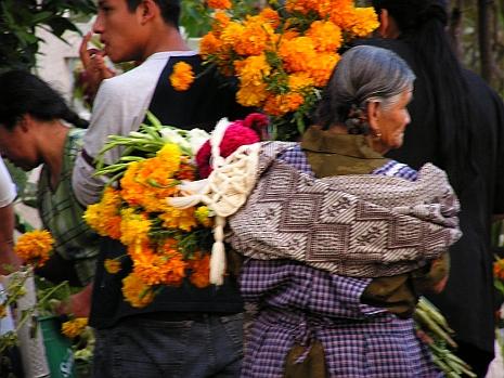 Oaxaca.rs