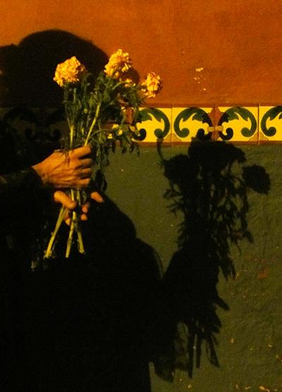 Flowersfor DOD.rs