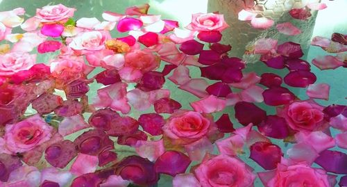 A fountain of roses3.jpeg