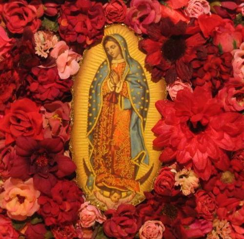Virgin-in-roses.rs